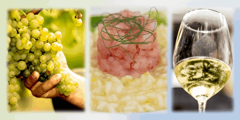 Un Racconto fra cielo, terra e mare – cena e degustazione