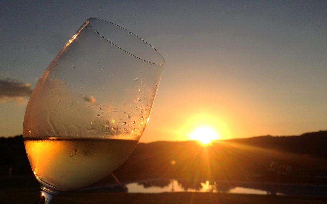 """""""La Toscana: fra tradizione e innovazione"""" – Wine tour fra vigne, cantine, vini e territori"""