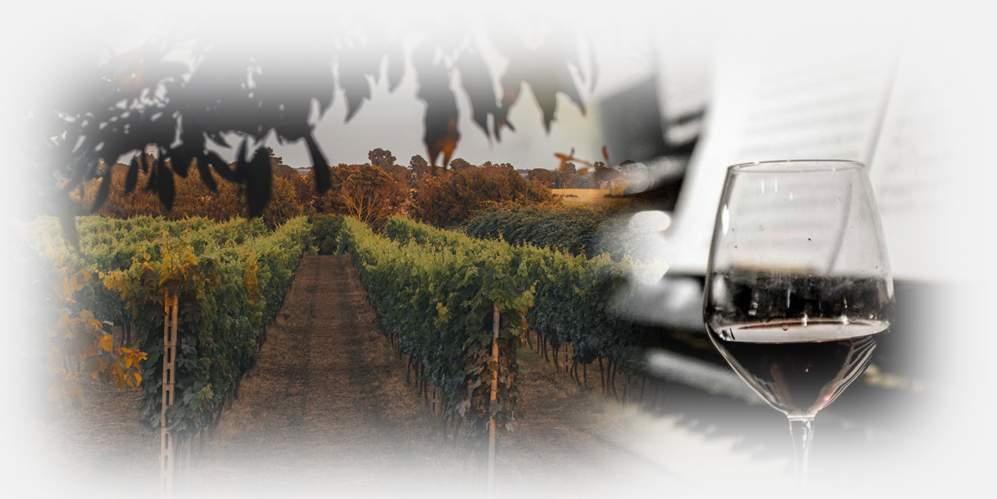 """""""L'Italia del Vino"""" – Corso di avvicinamento al vino italiano"""