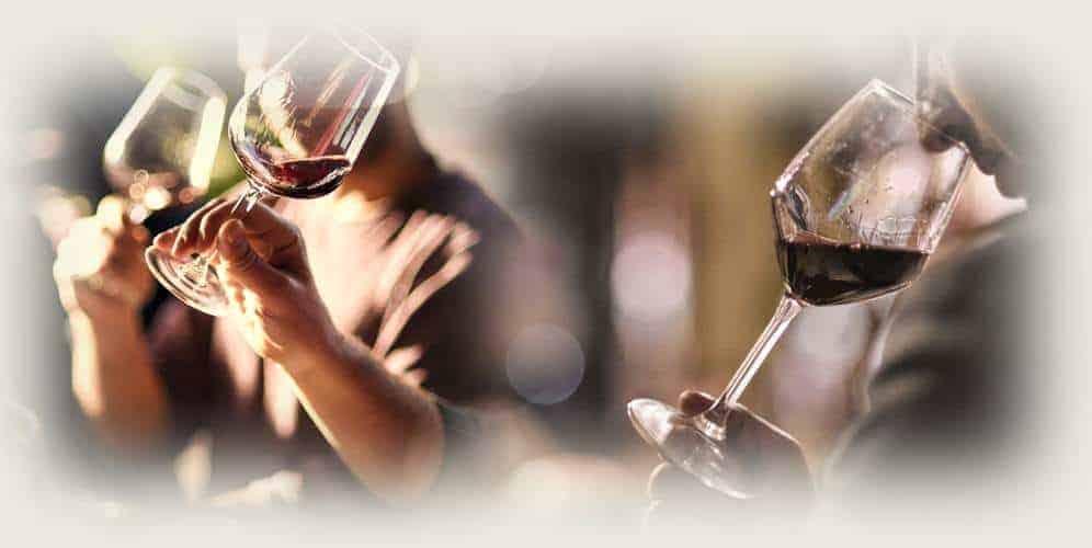 Corso privato di avvicinamento al vino