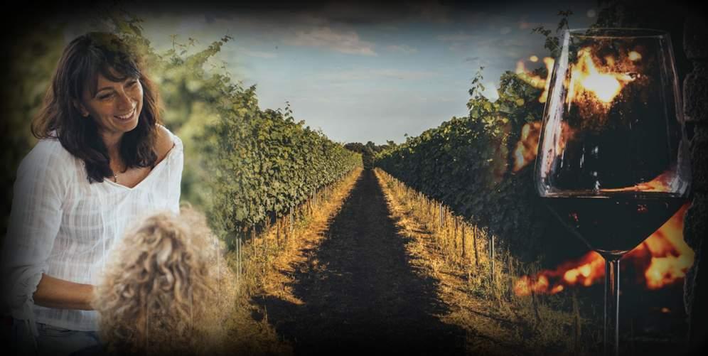 """""""La vigna e il camino"""" Degustazione e pranzo davanti al camino"""