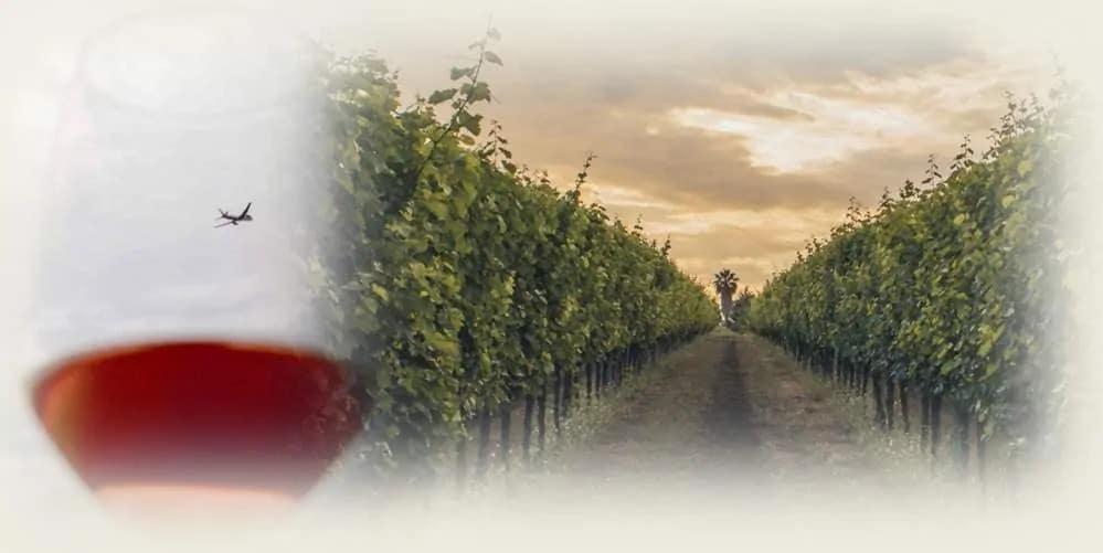 copertina-il-mondo-del-vino