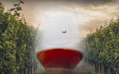 """Corso di avvicinamento al vino internazionale """"Il Mondo del Vino"""""""