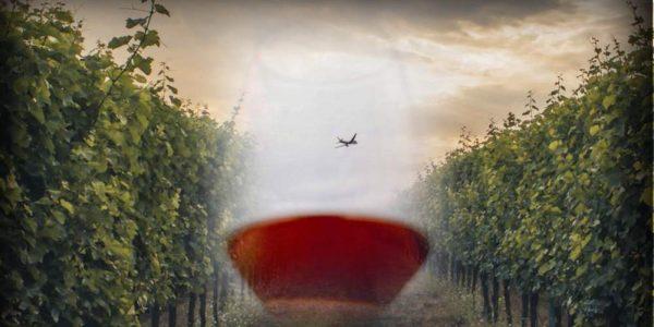 Corso avvicinamento al vino internazionale
