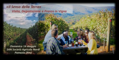 Il Senso della Terra, Visita e Pranzo in Vigna - SAN (2)