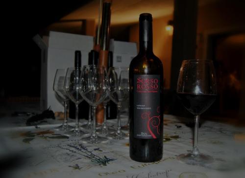 Vendemmia, Degustazione e Cena in Vigna - SAN (100)