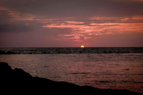 Aromi e profumi al tramonto 39